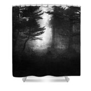 Deep In The Dark Woods Shower Curtain