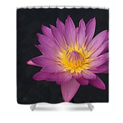 Deep Pink And Yellow... Shower Curtain