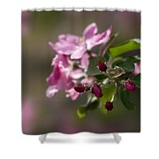 Deep Purple - Featured 3 Shower Curtain