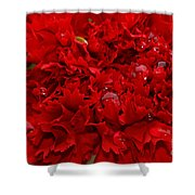 Deep Red Carnation Shower Curtain