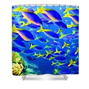 Deep Sea Fish And Diver Shower Curtain