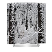 Deep Snow In The Forest Shower Curtain