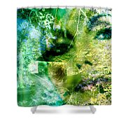 Deep Woods Wanderings Shower Curtain