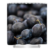 Deeply Damson Shower Curtain by Anne Gilbert