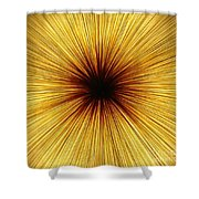 Deepness Shower Curtain