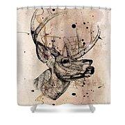 Deer 4 Shower Curtain
