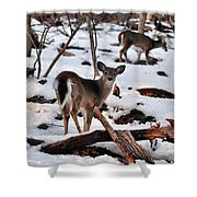 Deer And Snow Shower Curtain