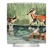 Deer At The River Shower Curtain