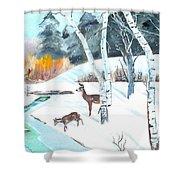 Deer Creek In Winter Shower Curtain