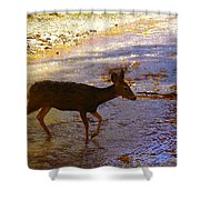 Deer Crossing Shower Curtain