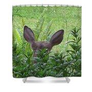 Deer Ear In A Mint Patch Shower Curtain