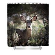 Deer I Shower Curtain