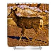 Deer In A Different Light Shower Curtain