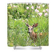 Deer In Magee Marsh Shower Curtain