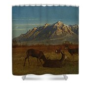 Deer In Mountain Home Shower Curtain
