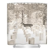 Deer In Snow Shower Curtain