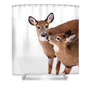 Deer Kisses Shower Curtain