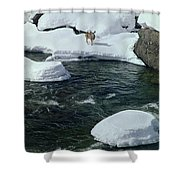104618-v-deer On The Snow Bank Shower Curtain