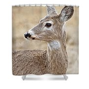 White Tail Deer Profile Shower Curtain