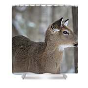 Deer Profile Shower Curtain