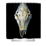 Deer Skull With Aura Shower Curtain