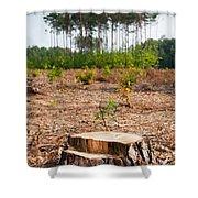 Woods Logging One Stump After Deforestation  Shower Curtain