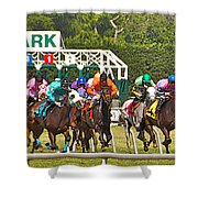 Delaware Park Shower Curtain
