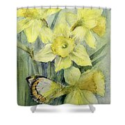 Delias Mysis Union Jack Butterfly On Daffodils Shower Curtain