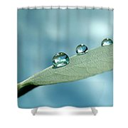 Delicate Drops Shower Curtain