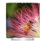 Delicate Embrace - Bee And Mimosa Shower Curtain