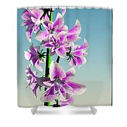 Delicate Flower... Shower Curtain