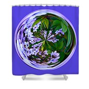 Delicate Flowers Orb Shower Curtain