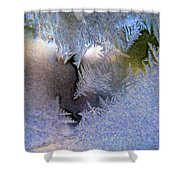 Delicate Ice - Digital Painting Effect Shower Curtain