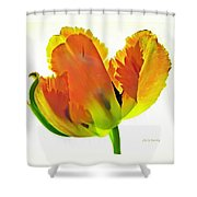 Delicate Inferno  Shower Curtain