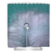 Delicate Mood Shower Curtain