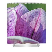 Delicate Nature Shower Curtain