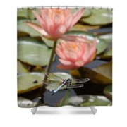 Delicate Observer Shower Curtain