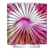 Delicate Orchid Blossom - Abstract Shower Curtain