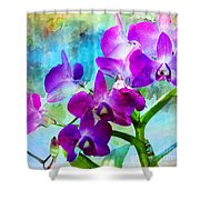 Delicate Orchids Shower Curtain