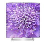 Delicate Purple Shower Curtain