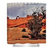 Delicate Strength Shower Curtain