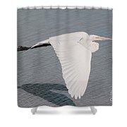 Delicate Wings In Flight Shower Curtain