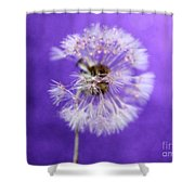 Delicate Wish Shower Curtain