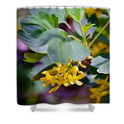 Delicate Yellow Flowers Shower Curtain