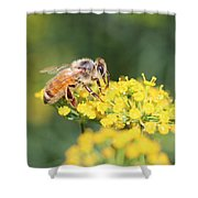 Delicious Dill Shower Curtain