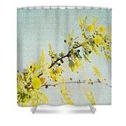 Delight - Square Shower Curtain