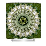 Delight X Shower Curtain