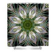 Delight 11 Shower Curtain
