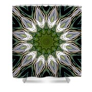 Delight 12 Shower Curtain