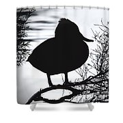 Delightful Duck Shower Curtain